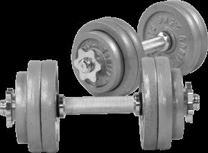 Cast Iron Dumbbell Vektsett – 30 kg