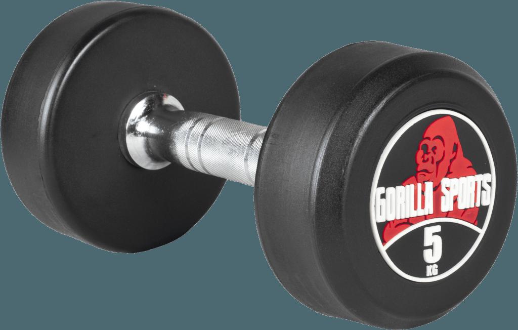Professional Fixed Dumbbell 2,5 kg – 32,5 kg