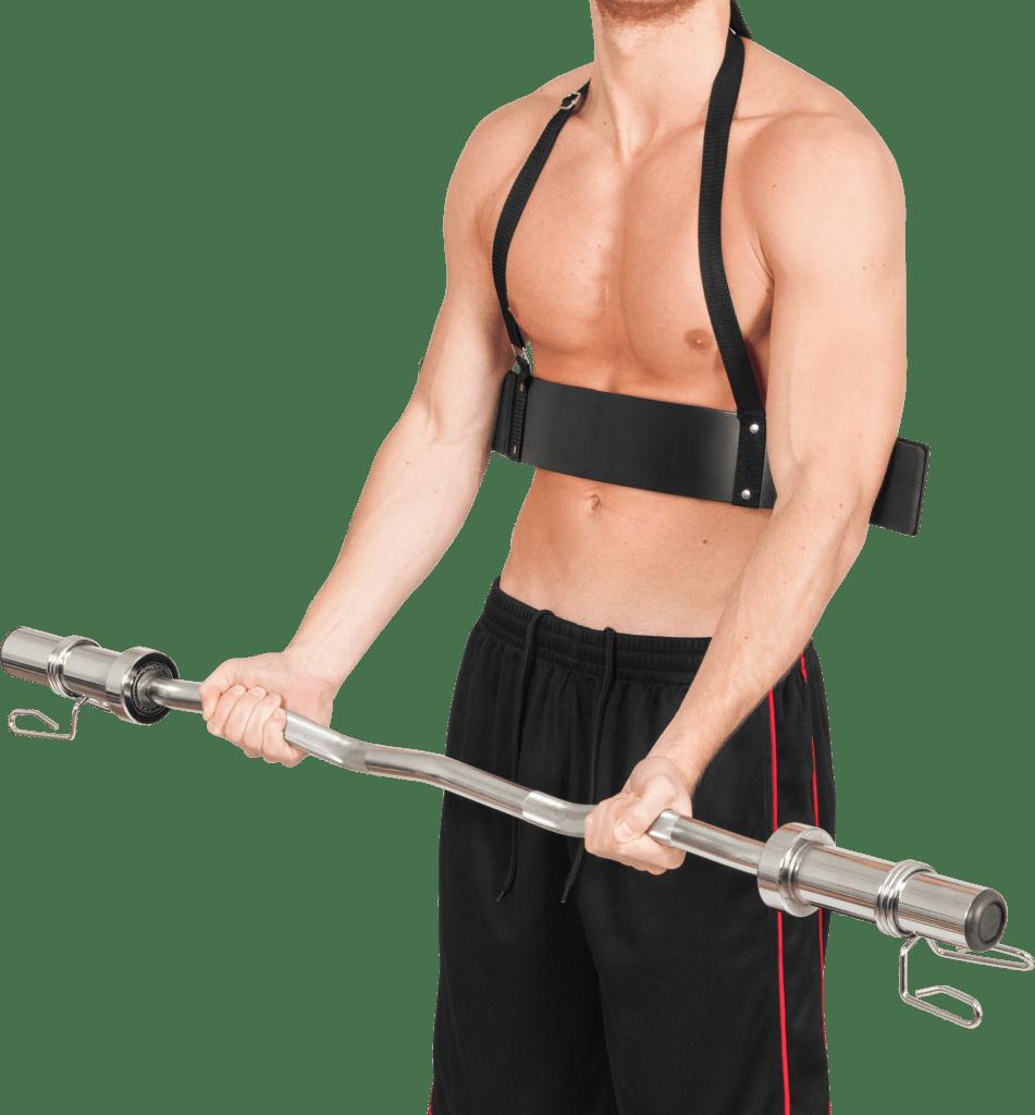 Biceps Isolator